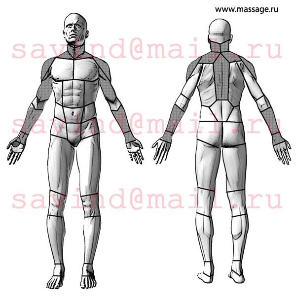 Дунаев массаж отдельных анатомических областей тела человека лазерная эпиляция на пол года