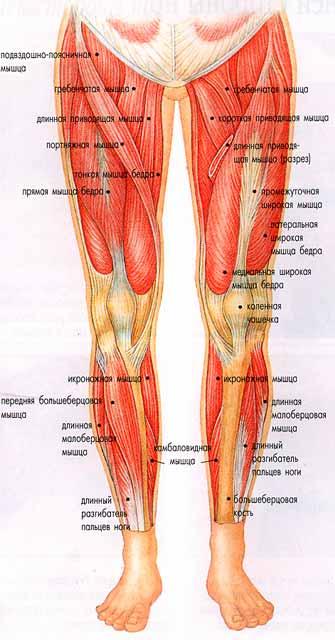 Косточка на ноге сбоку с внешней стороны стопы причины и лечение